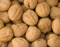 Pile of walnuts. A large pile of walnuts Royalty Free Stock Photos