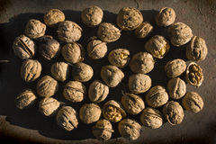 а pile of walnuts Royalty Free Stock Photo