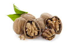 Pile of walnuts Stock Images