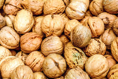 Pile of walnuts Royalty Free Stock Photography