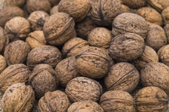 Pile of Wanuts. Image shows a pile of walnuts on a jute bag royalty free stock images