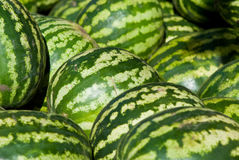 Pile of watermelons Royalty Free Stock Photos
