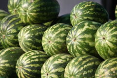 Pile of watermelons Royalty Free Stock Photography