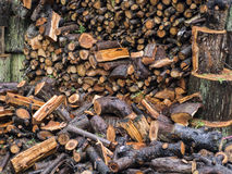 Pile of wet firewood Royalty Free Stock Photography