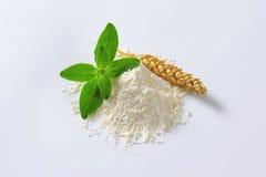 Pile of wheat flour Royalty Free Stock Image