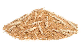 Pile of wheat grains Royalty Free Stock Photos