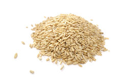 Pile of Whole Oats Stock Images