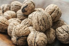 Walnuts in shell closeup Stock Images
