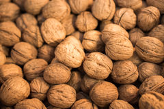 Pile of whole walnuts  with hard nutshells Royalty Free Stock Photo