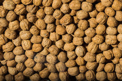 Pile of whole walnuts  with hard nutshells Royalty Free Stock Photos