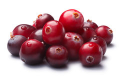 Pile of wild cranberries, clipping paths. Pile of wild cranberries (Vaccinium oxycoccus). Clipping paths, shadow separated Stock Photography