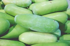Pile of winter melon in fresh market stock photography