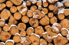 Pile of wood. In winter stock photo