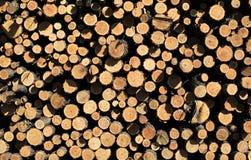 Pile of wood Stock Photos