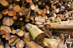 Pile of Wood. Close up from a pile of wood for fire in winter Stock Images