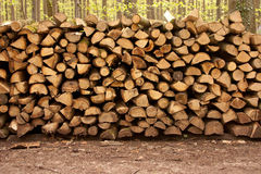 Pile of Wood - 4. Pile of wood in the forest Stock Photo