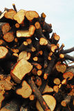 A pile of wood. Royalty Free Stock Images