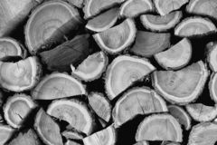 Pile of wood - black and white royalty free stock image