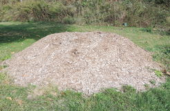 Pile of wood chips Stock Images