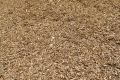 Pile of wood chips mulch background Royalty Free Stock Images