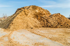 Pile of wood chips Royalty Free Stock Photos