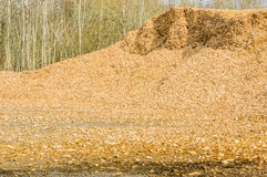 Pile of wood chips Stock Image