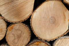 Pile of wood. Pile of chopped fire wood Stock Image