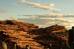 Pile of wood. And cloudy sky stock photography