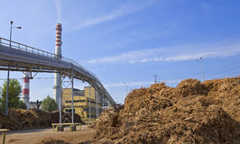 Wood and biomass plant. Pile of wood for combustion in a biomass boiler Royalty Free Stock Photography