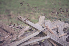 Pile of wood in a field close up Stock Photo