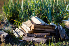 Pile of Wood for fire Royalty Free Stock Photo