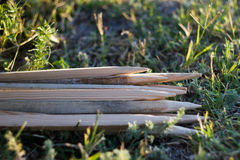 Pile of Wood for fire Stock Images