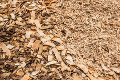 Pile of Wood Flakes Background/ Texture Royalty Free Stock Images