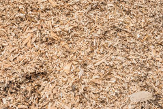 Pile of Wood Flakes Background/ Texture Stock Images