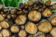 Pile of wood for heating Royalty Free Stock Images