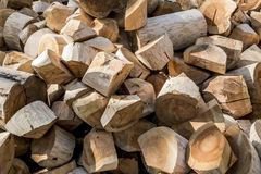 A pile of wood-hewn logs in the forest Royalty Free Stock Image