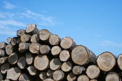Pile of wood in horizontal. New cargo on the lumberyard royalty free stock images