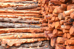 Pile of wood logs Stock Photography