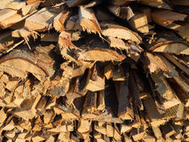 A pile wood logs Royalty Free Stock Photography