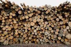 Pile of wood logs .Forest logging site. felled tree trunks. stock photography