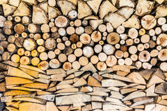 Pile of wood logs in the garden royalty free stock image
