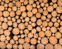 Wood logs ready for winter. Pile of wood logs ready for winter Royalty Free Stock Photos