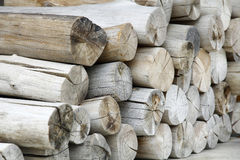 Pile of wood. Logs ready for winter Stock Images