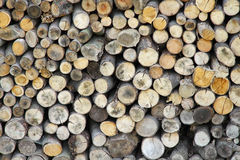 Pile of wood logs ready for winter. Landscape exterior Royalty Free Stock Photo