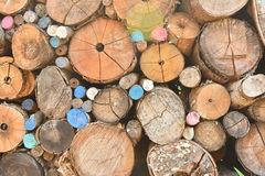 Pile of wood logs. With some colored royalty free stock images