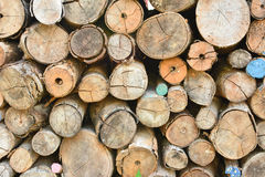 Pile of wood logs. With some colored stock image