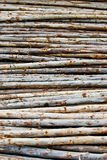 Pile of wood in logs storage Royalty Free Stock Images