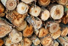 Pile of wood in logs storage closeup Stock Photography