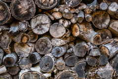 Pile of wood logs storage Stock Photography