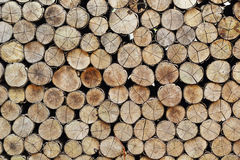 A pile of wood. Royalty Free Stock Photos